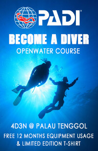 Become-a-diver
