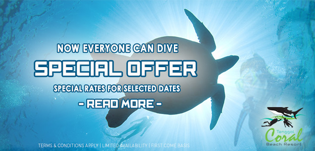 Tenggol-Diving-Special-Offer